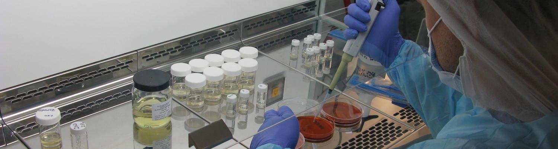 Ridgeway Research studies for the development of livestock vaccines