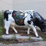 USA dairy cow