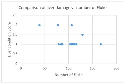 Ridgeway Research Ltd| Comparison of liver damage vs number of fluke