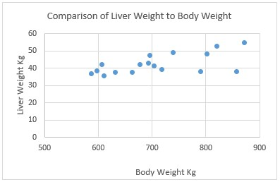 Ridgeway Research Ltd | Comparison of liver weight to body weight